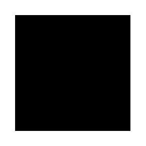 Компания DotMod